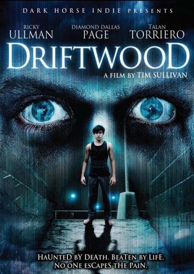 Poster de Driftwood