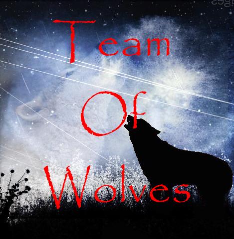 Team Of Wolves Index du Forum